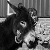 Netwerkbijeenkomst met workshop 'Coachen met Paardenkracht' | Beltrum