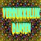 Verrukkelijk Dansen - DJ Tino   Haarlem
